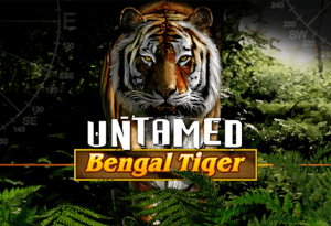 Have Fun With Untamed: Bengal Tiger